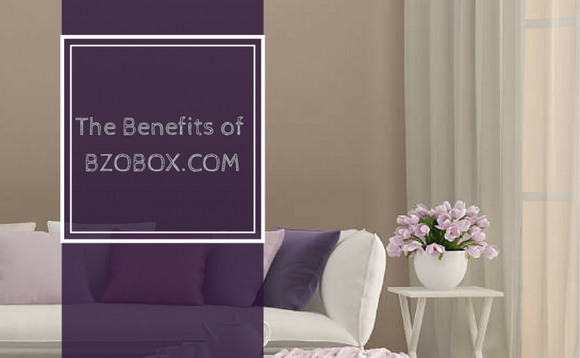 The benefits of BzoBox